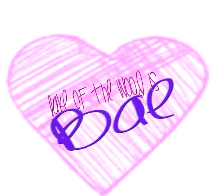 LAKE OF THE WOODS IS BAE